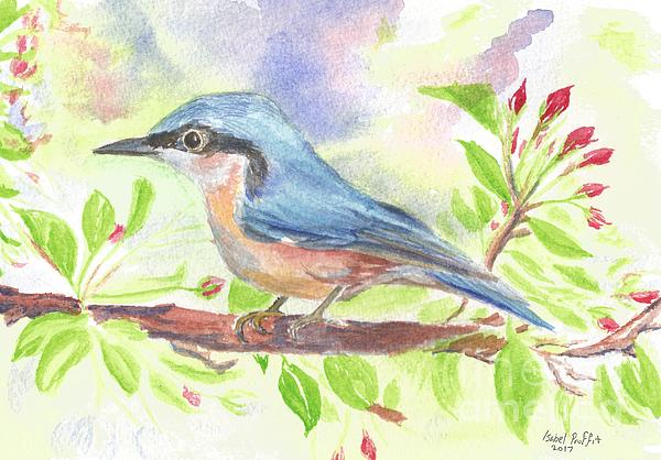 Bird Painting - Spring Bird  by Isabel Proffit