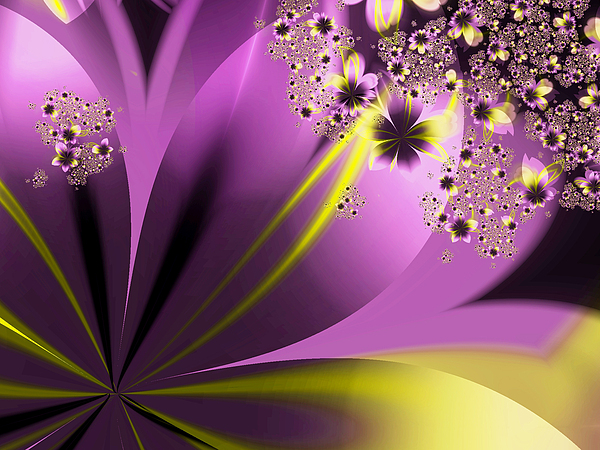 Flowers Digital Art - Spring Fling by Nicole Zimmer