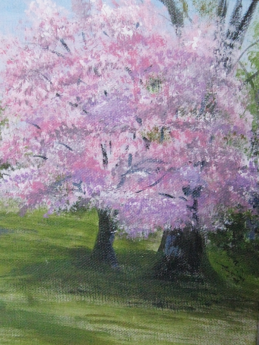 Dogwood Painting - Spring In Bloom by Trilby Cole