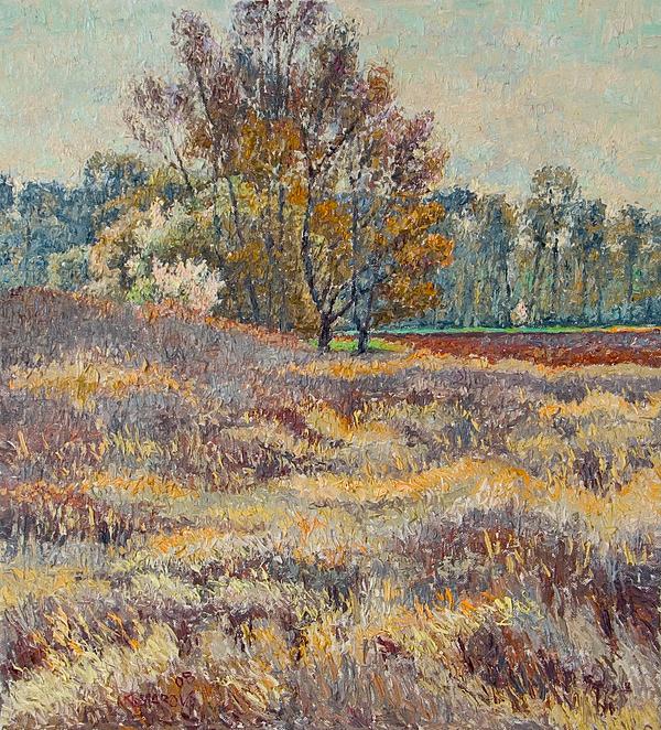 Landscape Painting - Springtime by Vitali Komarov