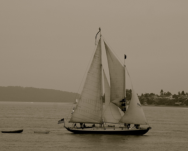 Tall Ships Photograph - S.s.s. Rejoice by Sonja Anderson