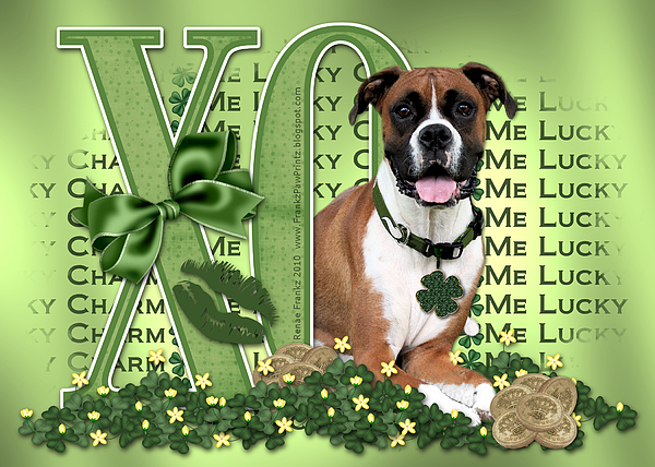 Boxer Digital Art - St Patricks Day - My Boxer Is Me Lucky Charm by Renae Laughner