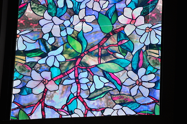 Glass Photograph - Stained Glass by Len Barber