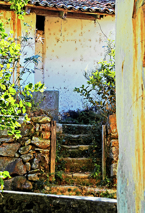 Village Photograph - Stairway7880 by David Mosby