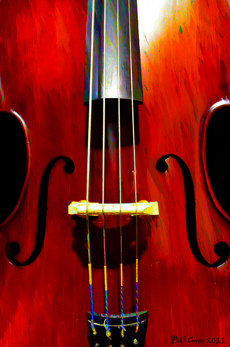 Bass Photograph - Stand Up Bass by Bill Cannon