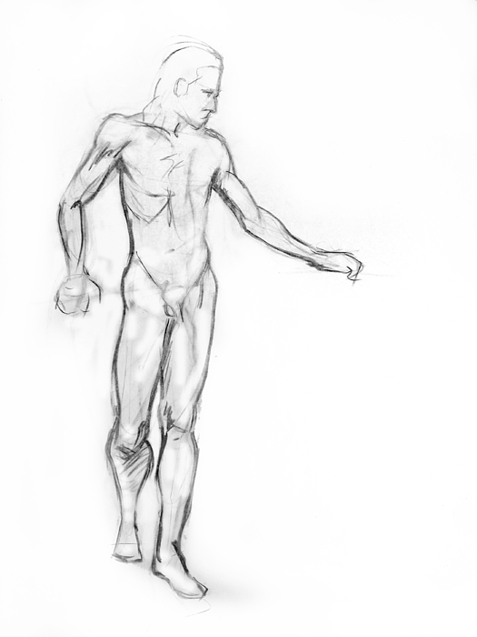 Drawing Drawing - Standing Male Nude by Adam Long