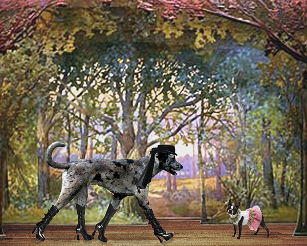 Great Dane Digital Art - Stealing The Show by Rachel Linder