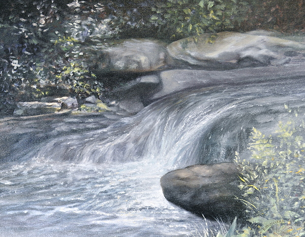 Water Painting - Stepping Stones by Penny Neimiller