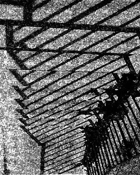 Steps Photograph by John Bradburn