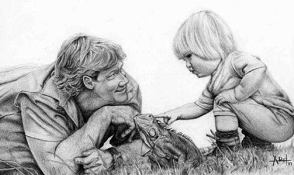Portrait Drawing - Steve Irwin by Angela Hannah