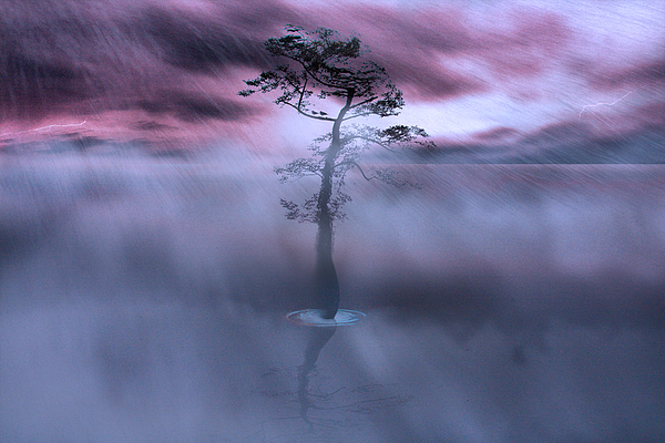 Landscape Photograph - Stick Together The Storm Will Pass by Gray  Artus