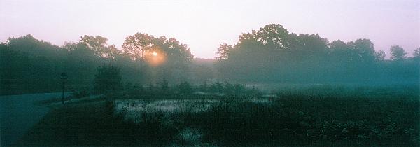 Fields Photograph - Still Mist by Tom Hefko