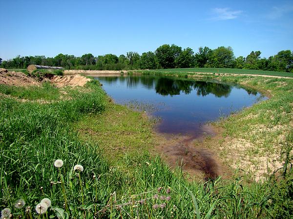 Landscape Photograph - Still Pond Reflections by Todd Zabel