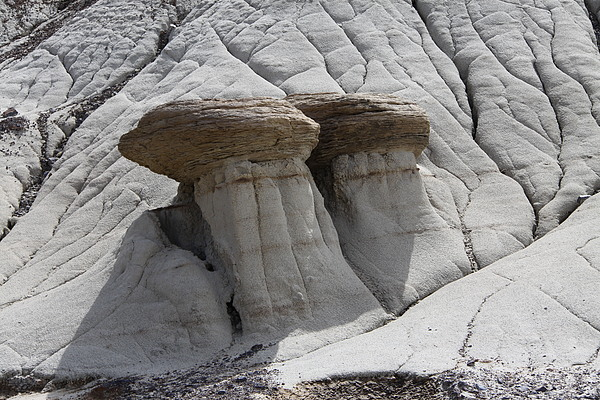 Landscape Photograph - Stone Mashrooms by Sergey  Nassyrov
