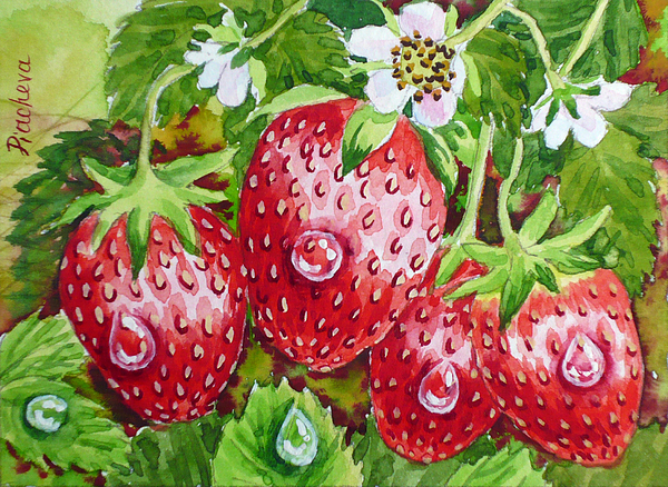 Summer Painting - Strawberry In The Garden. by Natalia Piacheva