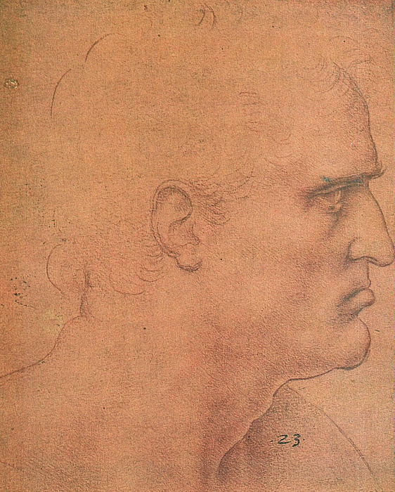 Study For The Last Supper Apostle Bartholomew Drawing By