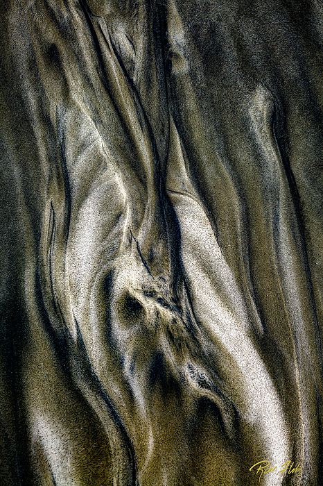 Beach Photograph - Study In Brown Abstract Sands by Rikk Flohr