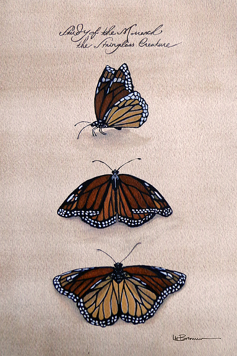 Monarch Mixed Media - Study Of The Stain-glass Creature by Leslie M Browning
