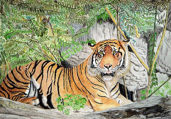 Sumatran Tiger Painting - Sumatran Tiger by Yvonne Johnstone
