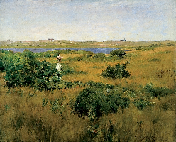 Long Island Painting - Summer At Shinnecock Hills by William Merritt Chase