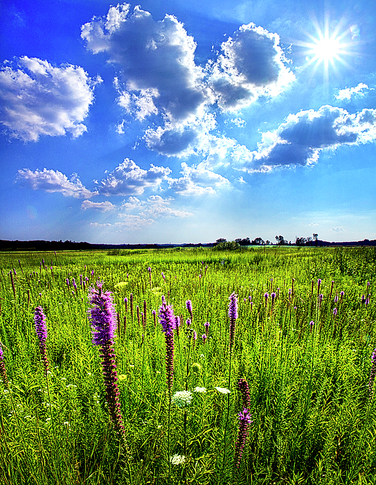 Horizons Photograph - Summer Day by Phil Koch