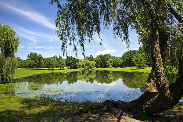Binghamton Photograph - Summertime At Otsiningo Park by Christina Rollo
