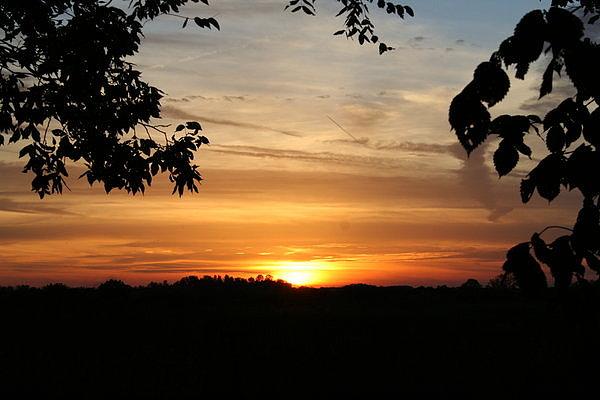 Sun Photograph - Sun Set by Dave Oliver