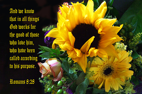 Scripture Photograph - Sunflower Bouquet  by Linda Phelps