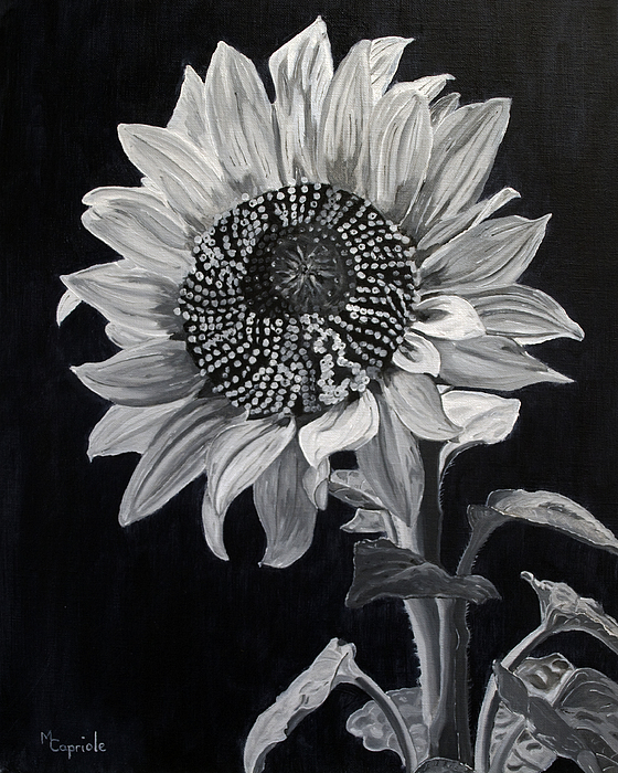 """allen ginsberg sunflower sutra Allen ginsberg, """"sunflower sutra"""" from collected poems, 1947-1980 by apanaete."""