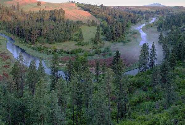 Palouse Photograph - Sunrise In Elberton Canyon - 1 by Jerry McCollum