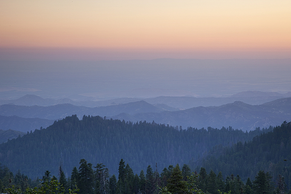 Sequoia National Park Photograph - Sunrise Of Sequoia by Rick Pham