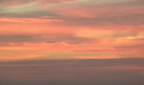 Sunrise Pinks Photograph by Kim Zwick