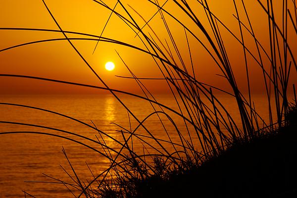 Backdrop Photograph - Sunset by Carlos Caetano