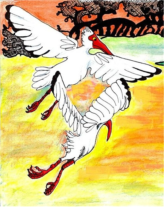 Ibis Drawing - Sunset Flight by Carol Allen Anfinsen