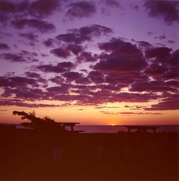 Photo Photograph - Sunset-prince Edward Island by Addie Hocynec