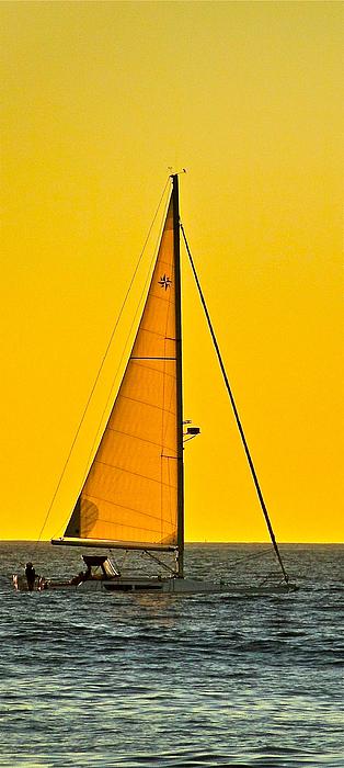 Sailing Photograph - Sunset Sailing by Liz Vernand