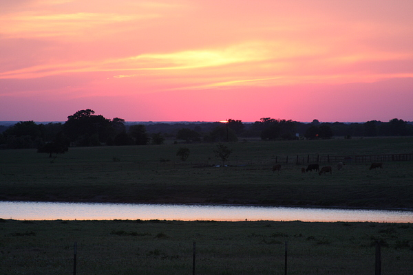 Country Photograph - Sunset With Pond by Jonathan Kotinek