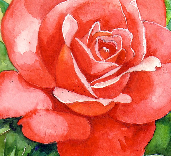 Petals Painting - Supreme Beauty by Val Stokes