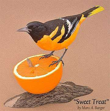 Oriole Sculpture - Sweet Treat by Marc  Barger