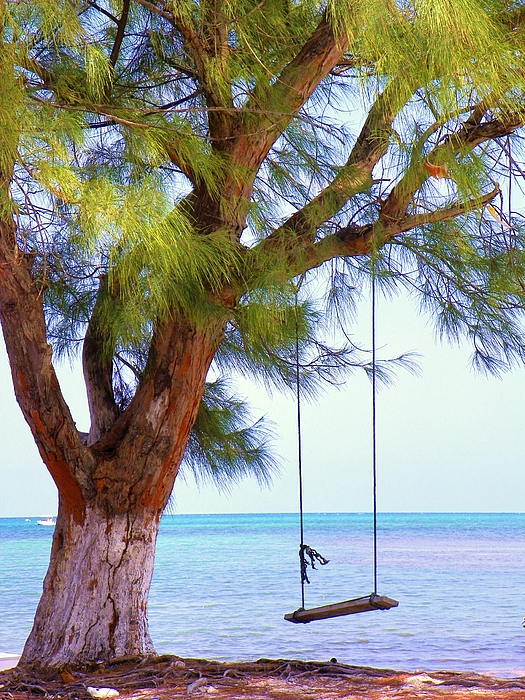 Seascapes Photograph - Swing Me... by Karen Wiles