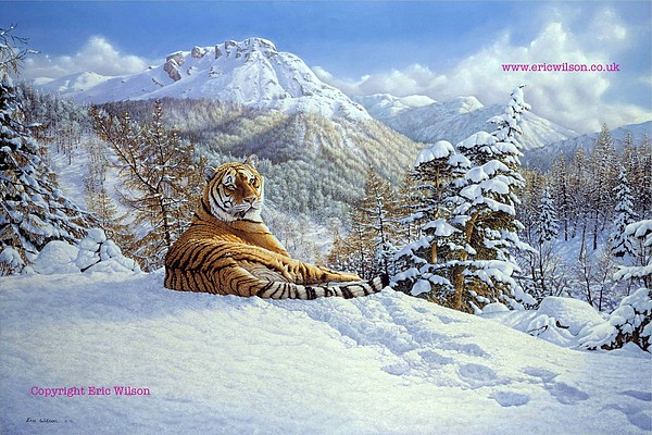 Tiger Painting - Taiga Tiger by Eric Wilson