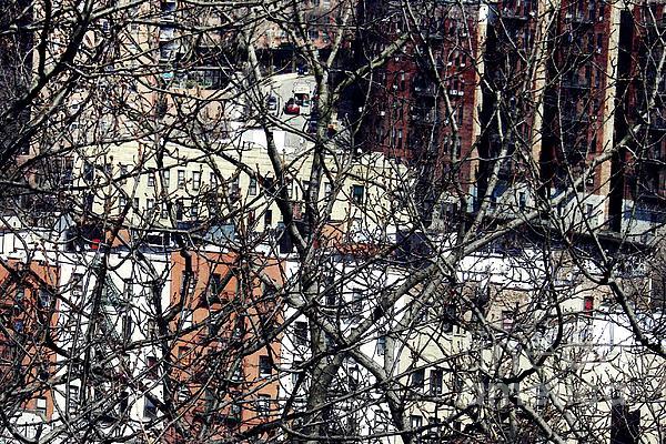 City Photograph - Tangled Town by Sarah Loft