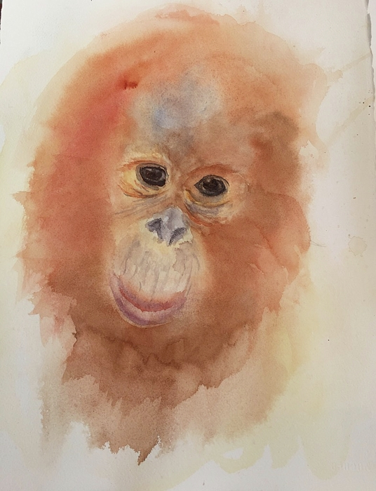 Animal Painting - Tangy by Lori Chase