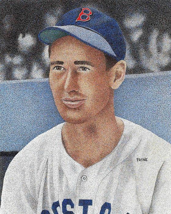 Baseball Drawing - Ted Williams by Rob Payne