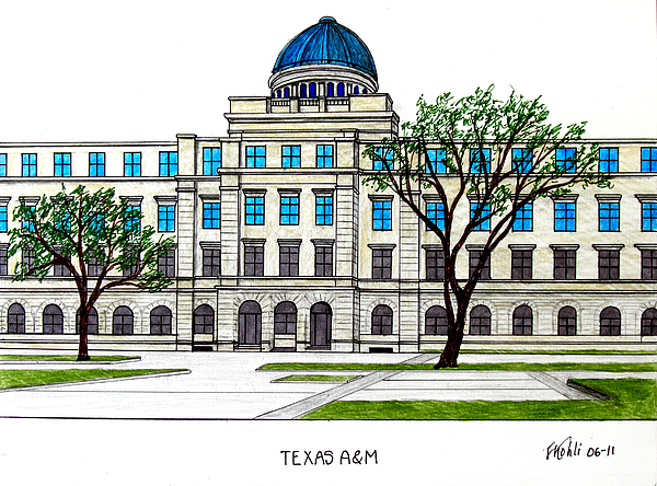 Universities Drawing - Texas Am University by Frederic Kohli