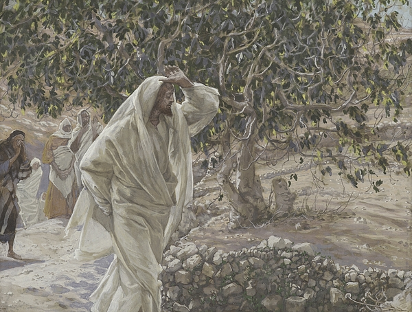 Tissot Painting - The Accursed Fig Tree by Tissot