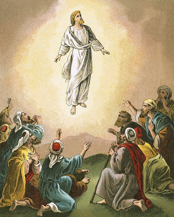 Bible Painting - The Ascension by English School