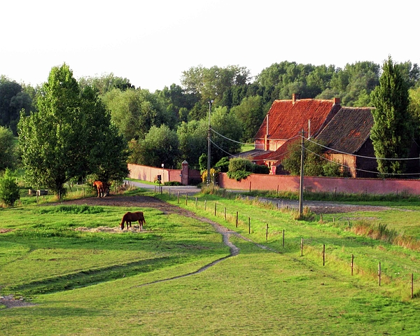 Country Photograph - The Belgian Countryside by David L Griffin
