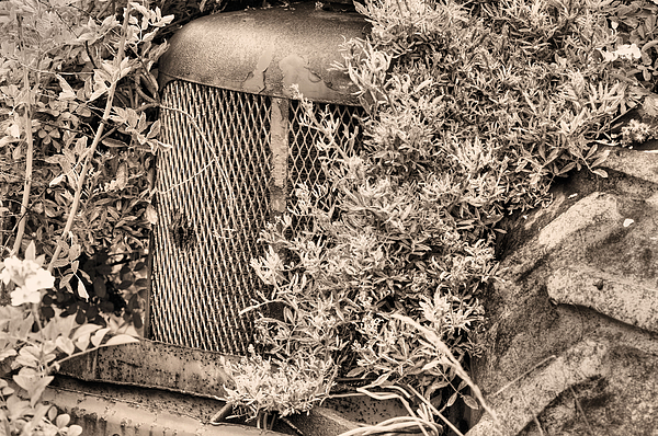 Tractor Photograph - The Bigfoot Sighting Bw by JC Findley