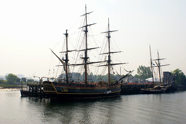 Tall Ships Photograph - The Bounty by Lois Lepisto